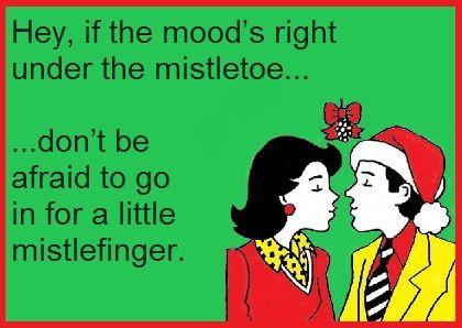 Hey If The Mood S Right Under The Mistletoe Don T Be Afraid To Go In For A Little Mistlefinger Ecard Funny Christmas Jokes Christmas Jokes Ecards Funny