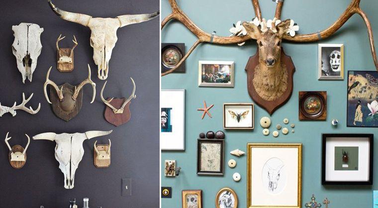 donnez un esprit cabinet de curiosit un bout de chez vous en accrochant des cr nes troph e. Black Bedroom Furniture Sets. Home Design Ideas