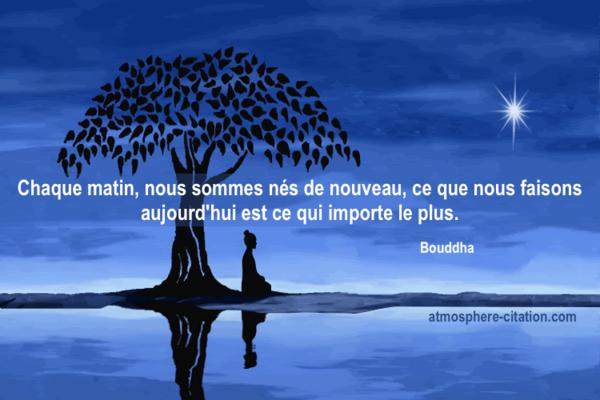 Citation Zen Pensée Positive Du Jour