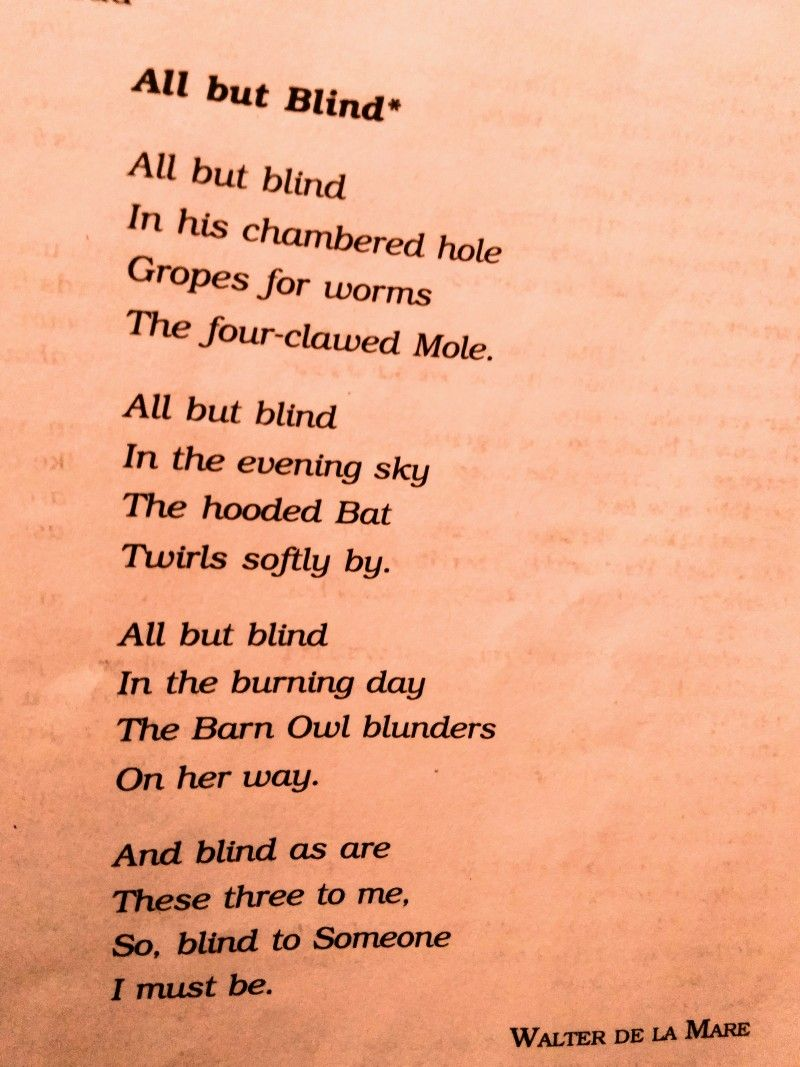 All But Blind Blinds