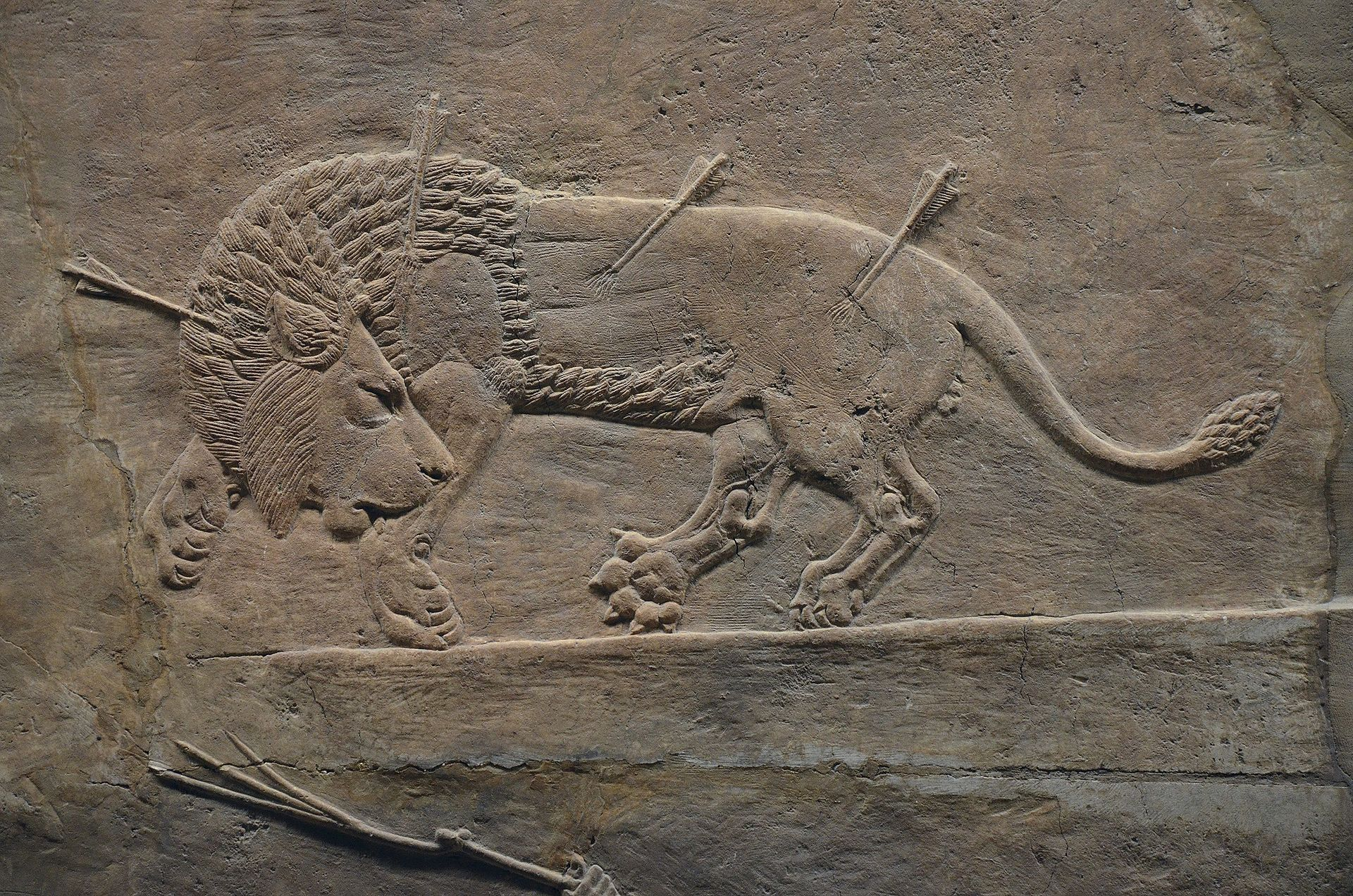 Sculpted Reliefs Depicting Ashurbanipal The Last Great Assyrian King Hunting Lions Gypsum Hall Relief From The British Museum Ancient Art Ancient Near East