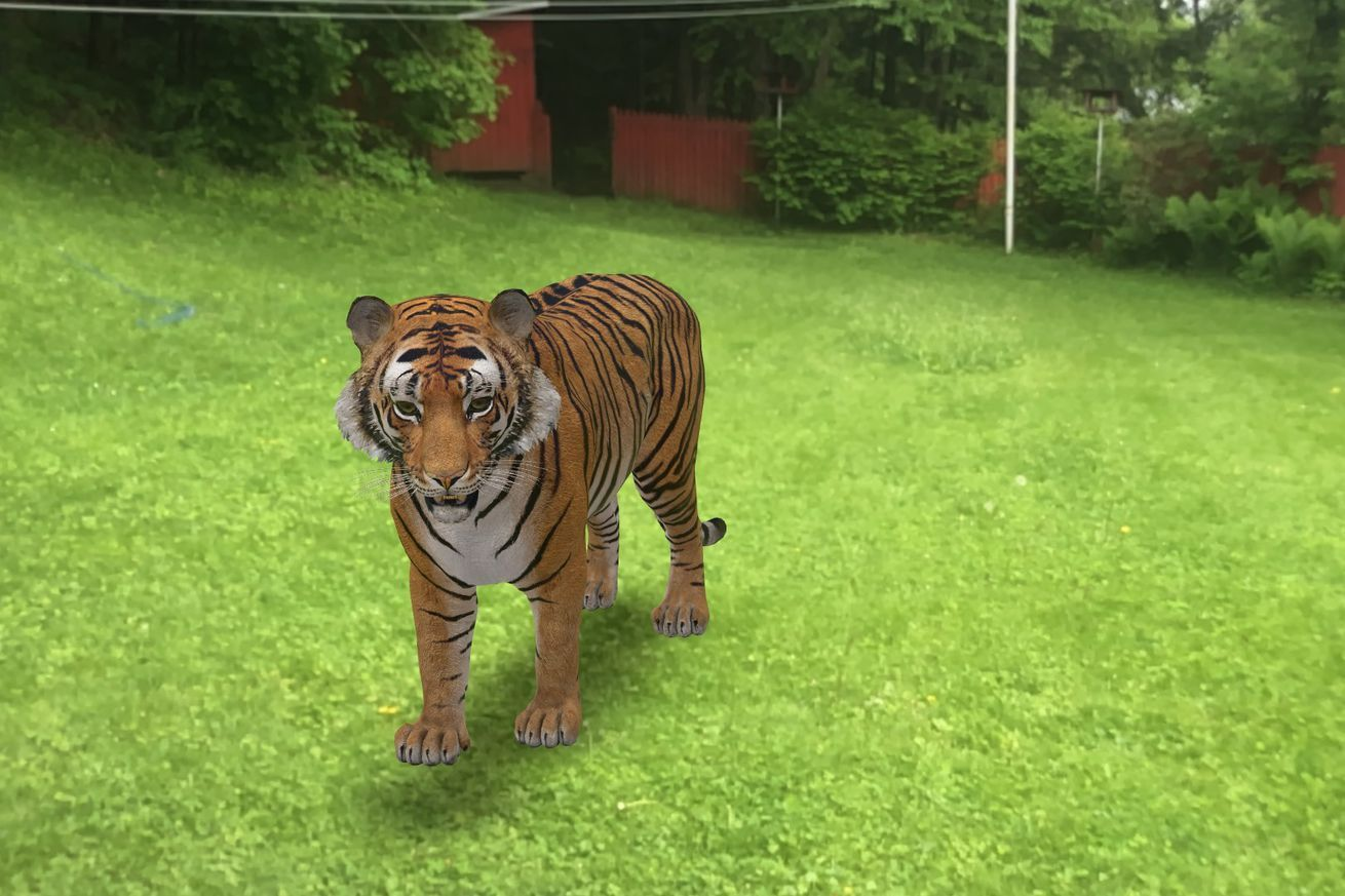 Here's how to look at lifesized animals in AR through
