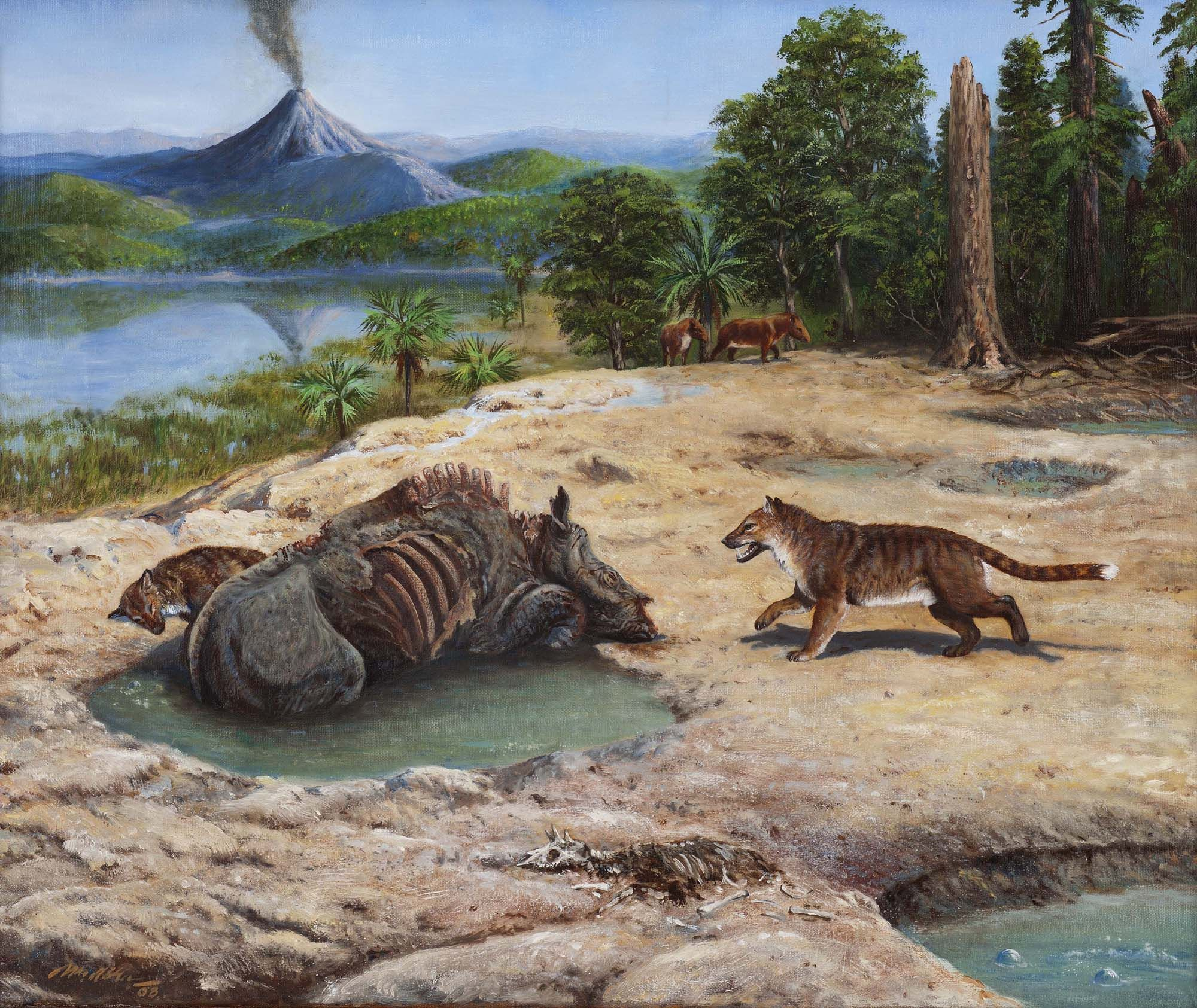 приятно доисторические животные смотреть картинки пересечения прямой осью