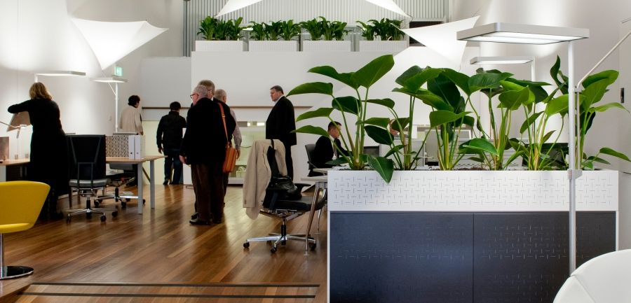 office planter. workstation planter box google search office