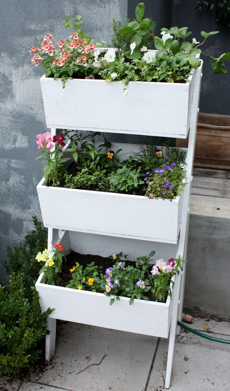 White Wooden Planter Box With Herbs And Flowers