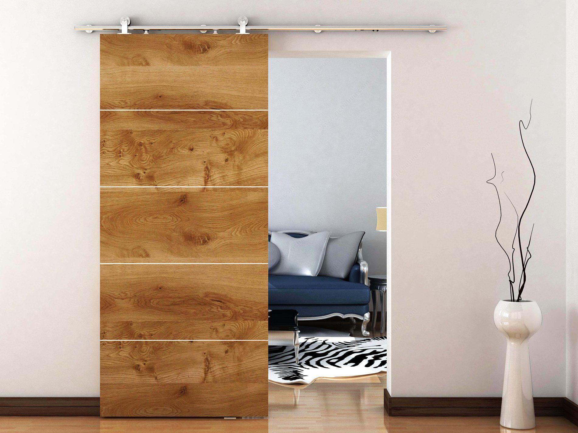 Find The Largest Offer In Contemporary Barn Door Type Sliding Door