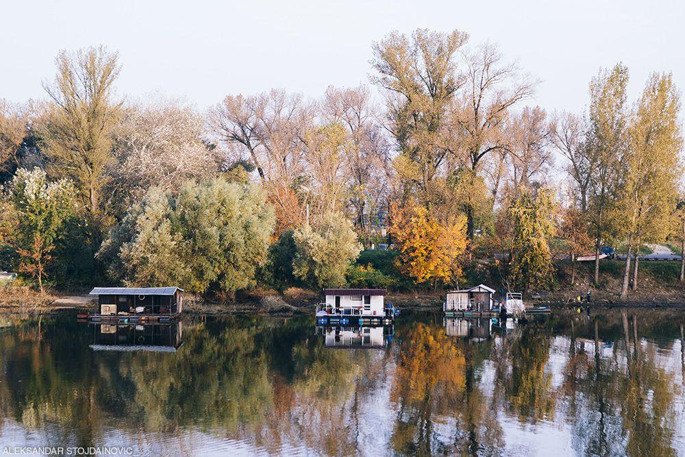 Autumn along the Sava river, Belgrade