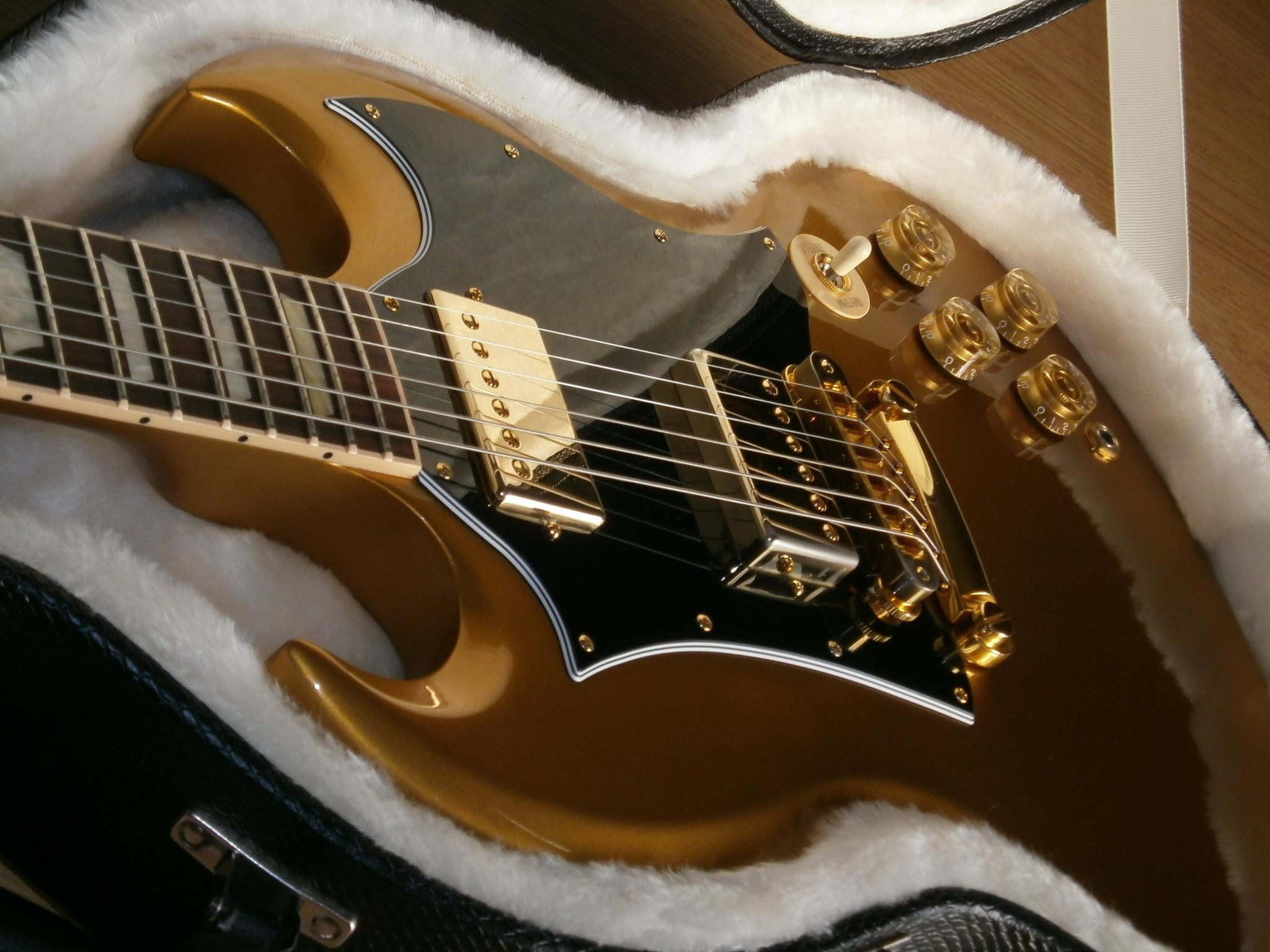 SG stands for Solid Gold (via Gibson's Facebook) https://www.facebook.com/GibsonGuitar