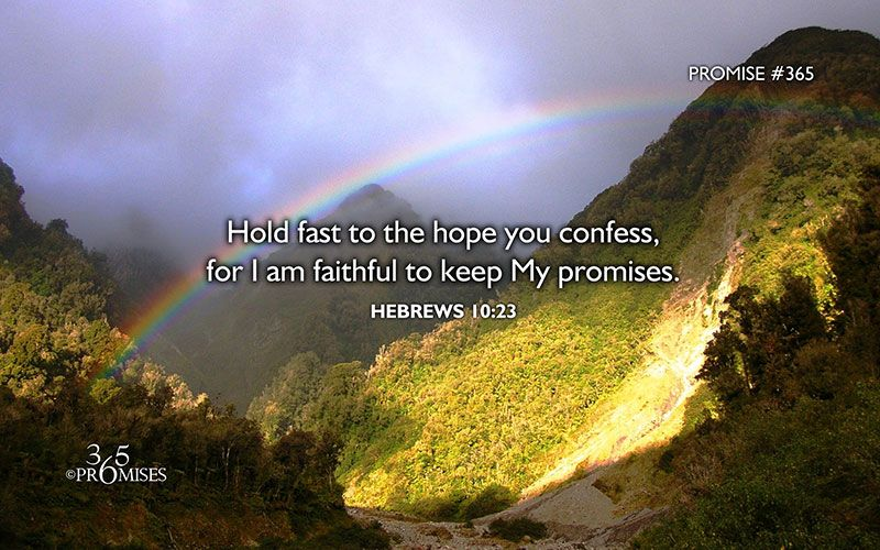 Hold fast to the hope you confess, for I am faithful to keep My promises.  Hebrews 10:23