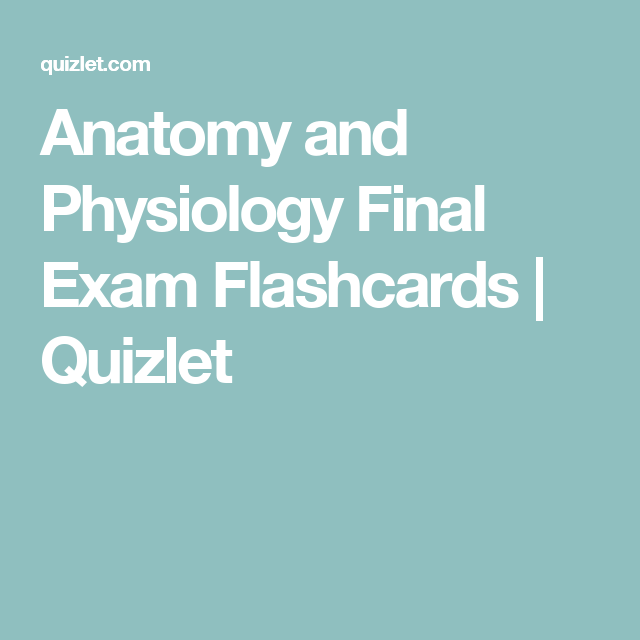 Anatomy and Physiology Final Exam Flashcards | Quizlet | Anatomy and ...