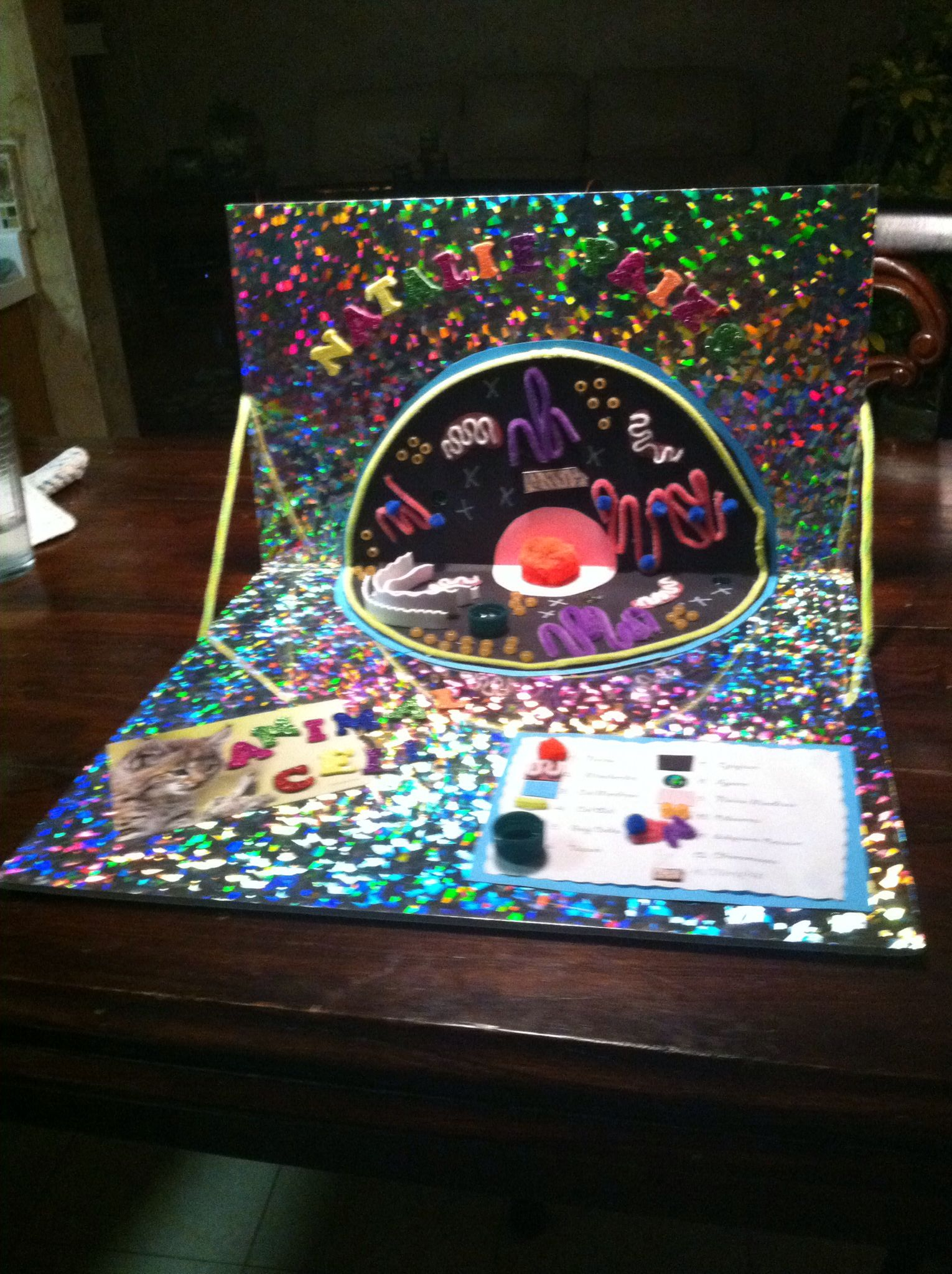 Animal Cell Model Seventh Grade Class Science Project Cell ...