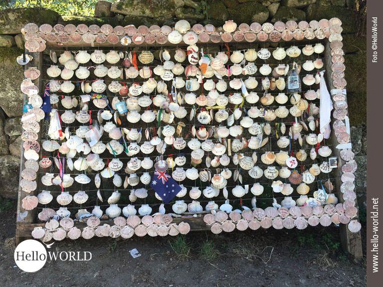 Auf dem Caminho Portugues trifft man zwischen Redondela und Arcade auf eine ganze Wand voller Jakobs- bzw. Pilgermuscheln.