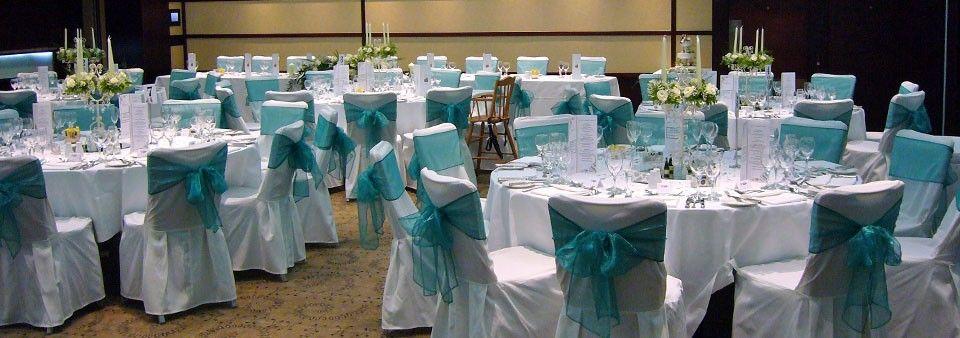 Teal and silver wedding ideas the teal wedding an for Teal wedding theme ideas