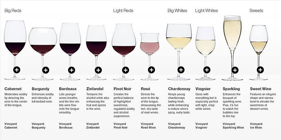 Wine Glasses By Wine Type Types Of Wine Glasses Wine Glasses