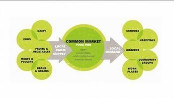 Blog | IATP Food and Community Fellows