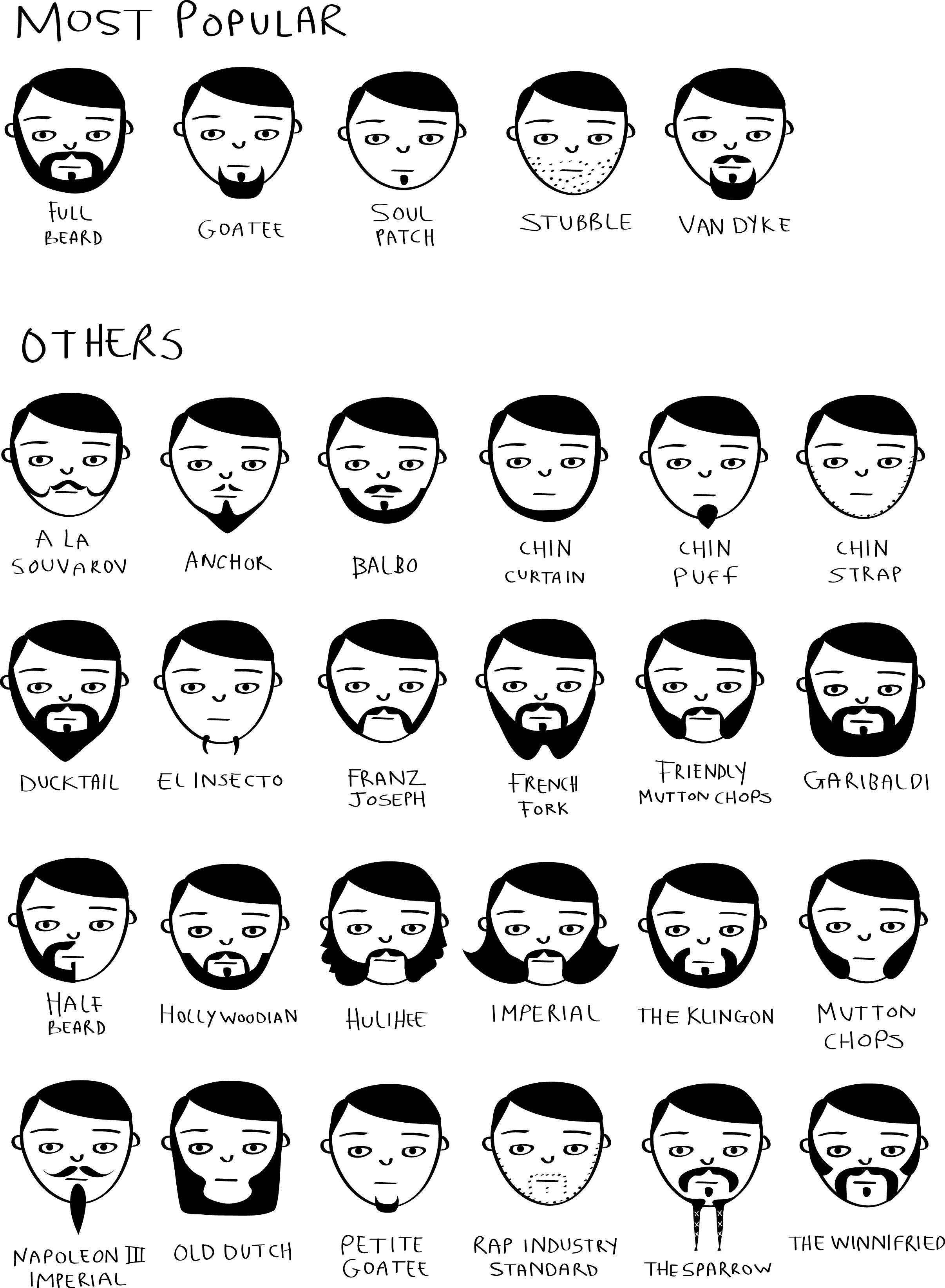 Movember Beard Styles Beard Styles Movember Beard Beard Drawing