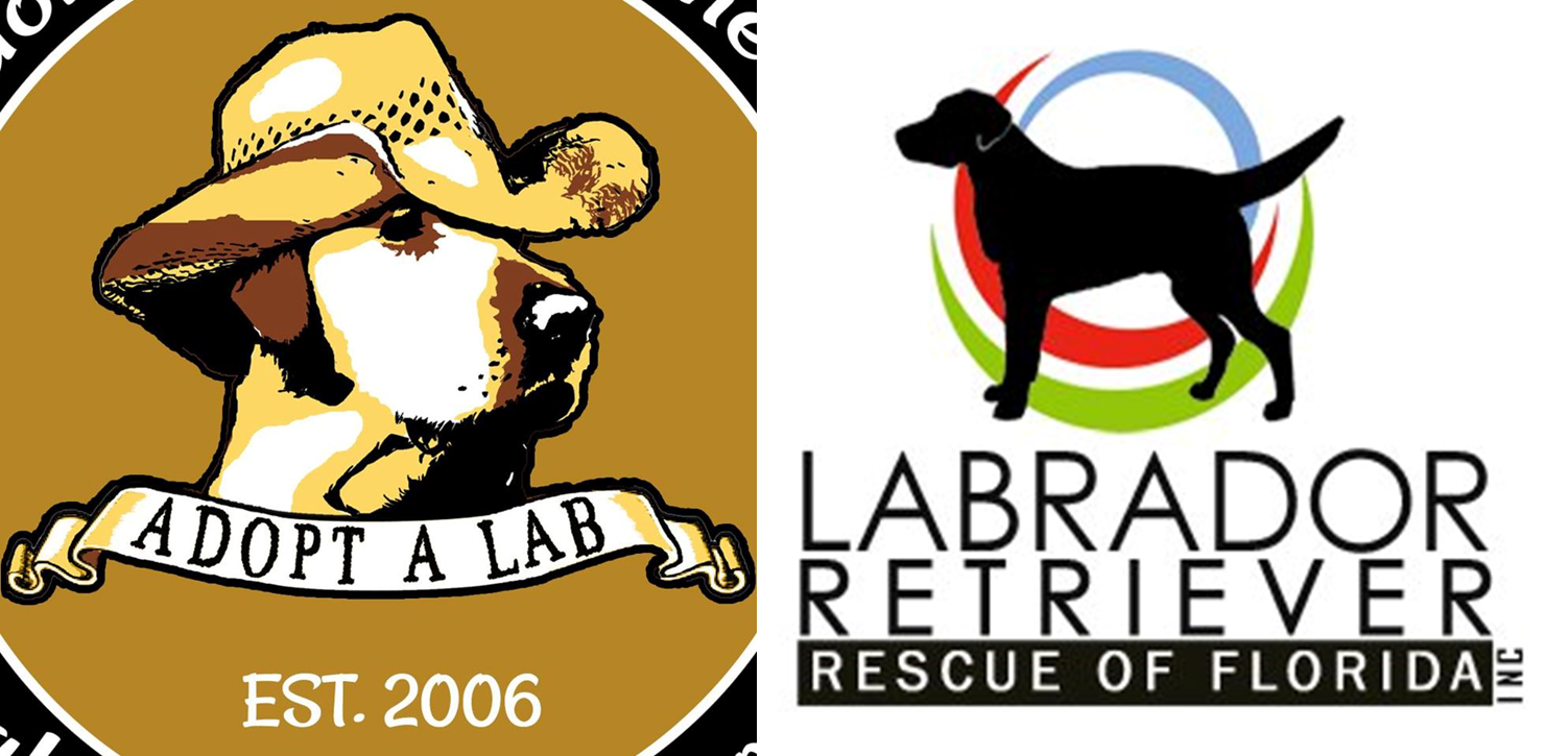 Over Under Is All About Supporting Lab Rescue Like Lrrof And Labrador Friends Of The South Labrador Retriever Rescue Labrador Retriever Lab Rescue