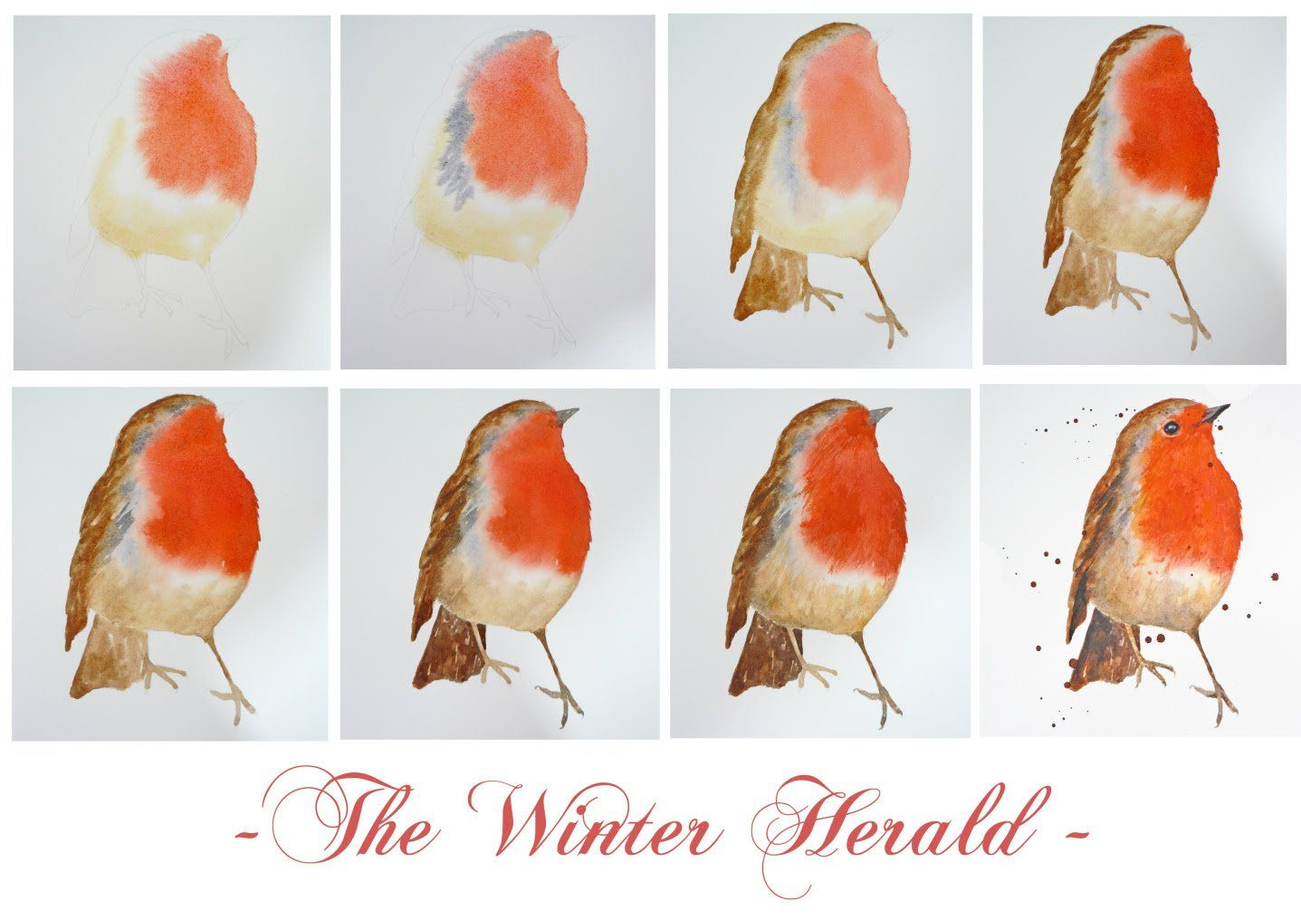 Art Demo – How to Paint a Robin in Watercolour