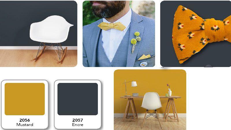 pingl par pinxo club sur canard champagne nuancier. Black Bedroom Furniture Sets. Home Design Ideas