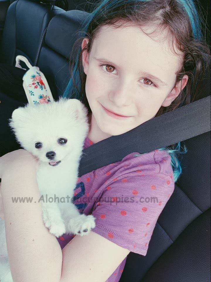 A small teddy bearmet her family in atlanta httpswww