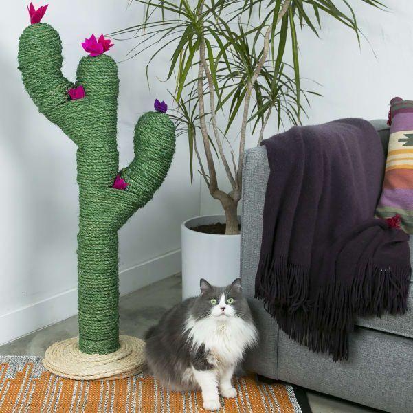 diy catcus scratching post cat life needs pinterest cat scratching post scratching post and cacti
