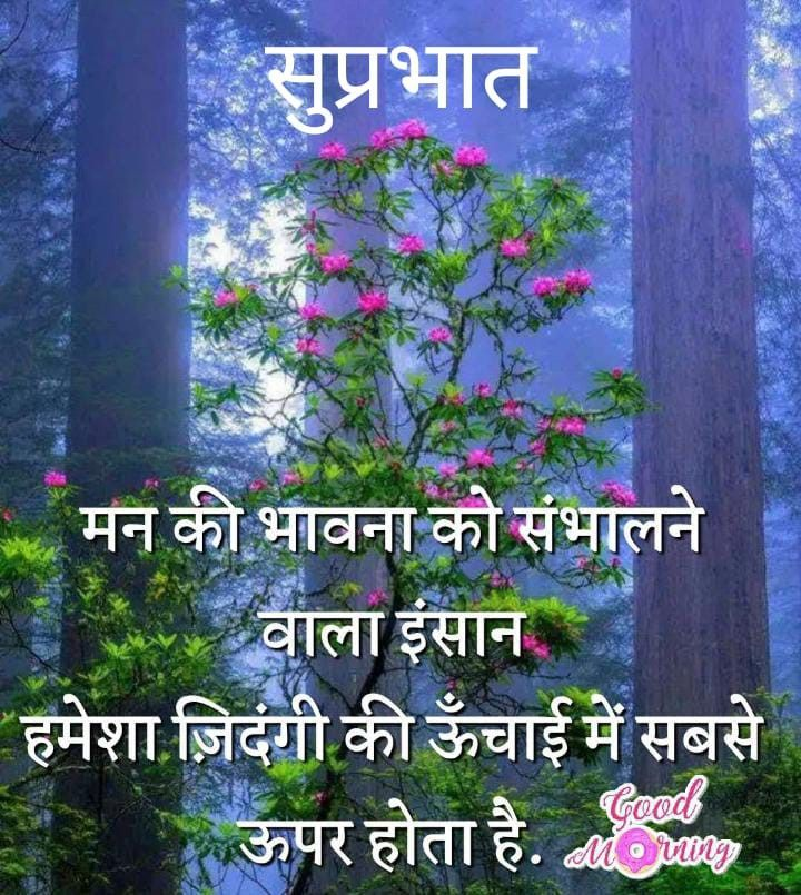 Pin by siya on Morning images   Good morning messages ...