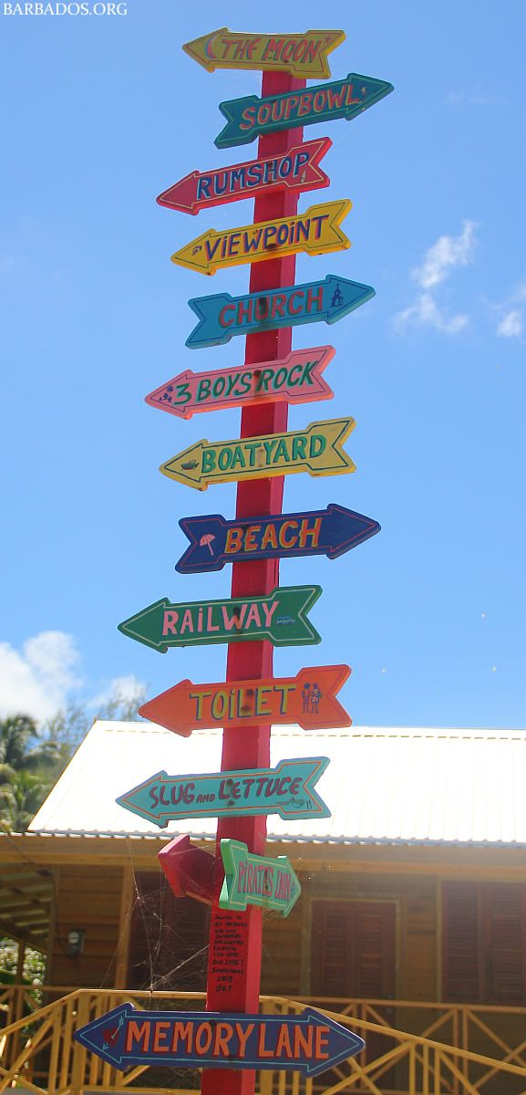 What shall we do in Barbados today