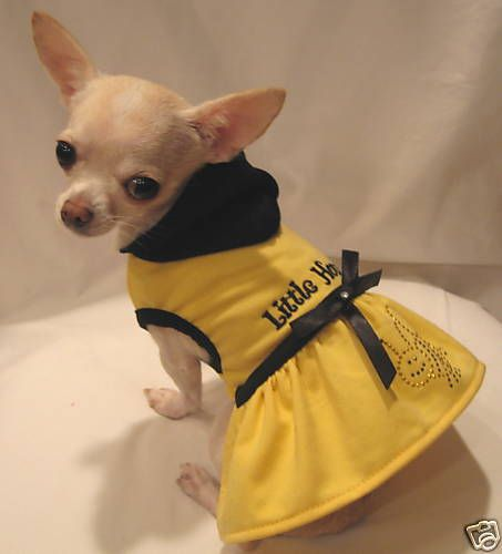 Dog Clothes Little Honey Dog Dress Dog Hoodie Chihuahua