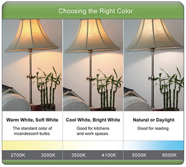 Led Light Bulb Brightness Scale Color Charts Bulb Guide Recessed Light Bulbs Led Light Bulb Daylight Bulbs
