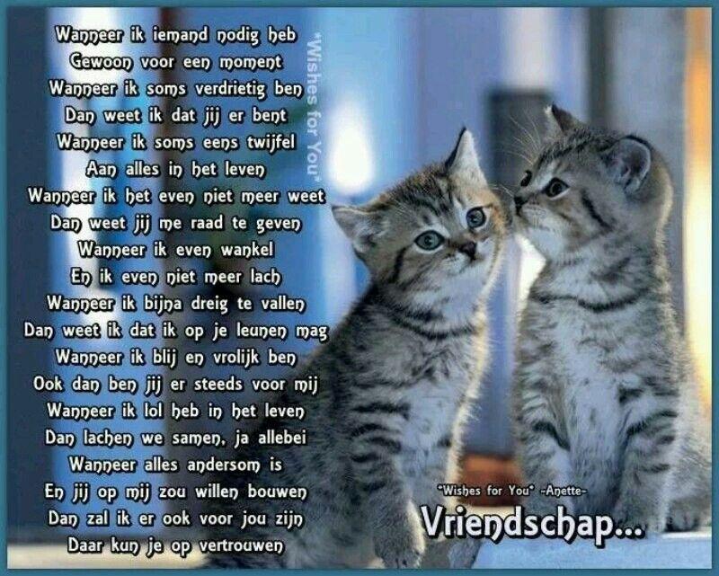gedigten over vriendschap