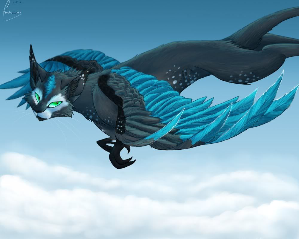 Anime Cat With Wings cat with dragon wings - google search | warrior cats fan art