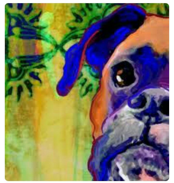 Boxer Dog Art Boxer dogs, Boxer dog puppy, Boxer dog tattoo