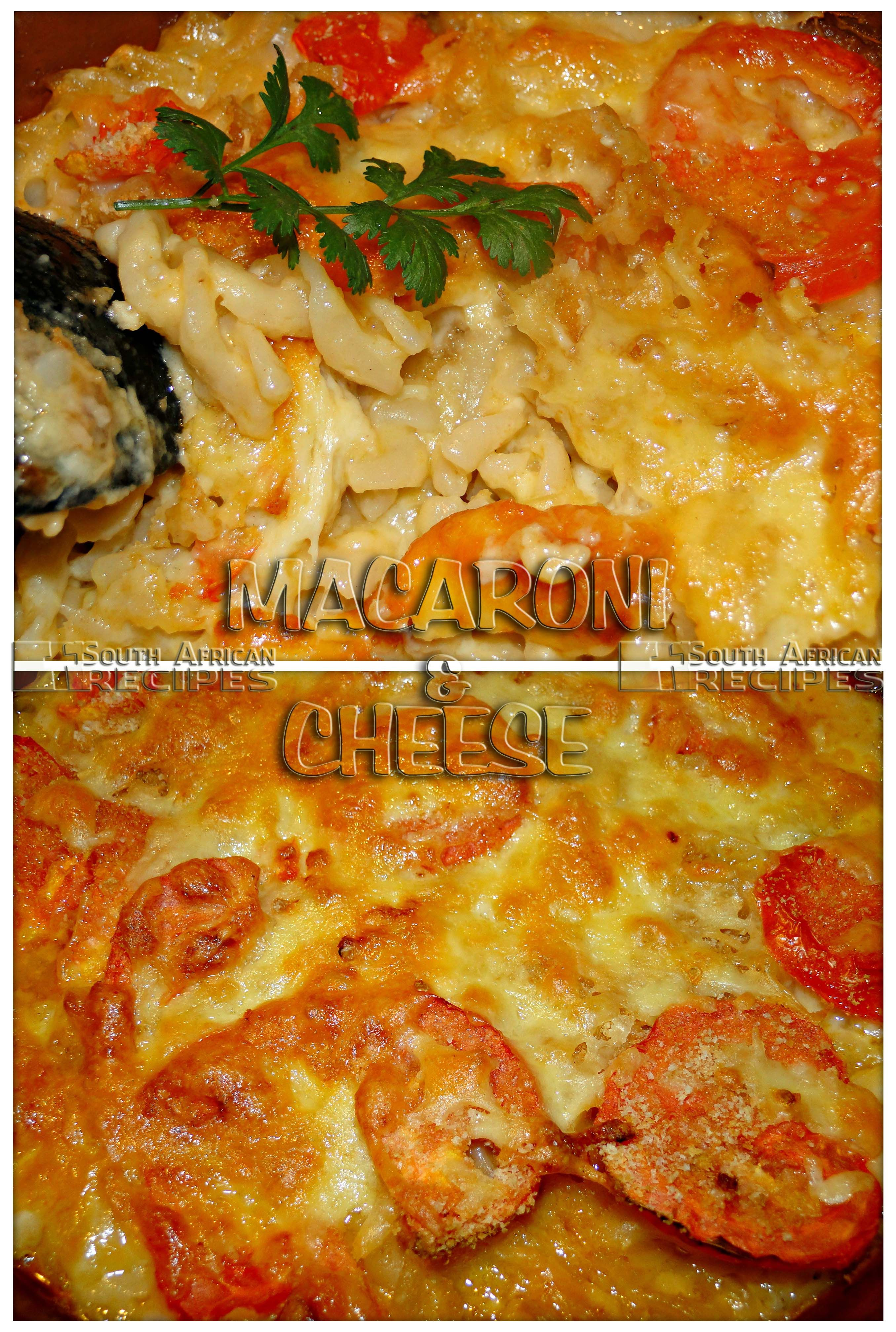 South african recipes macaroni and cheese chilliliefde 12 light south african recipes macaroni and cheese chilliliefde forumfinder Image collections