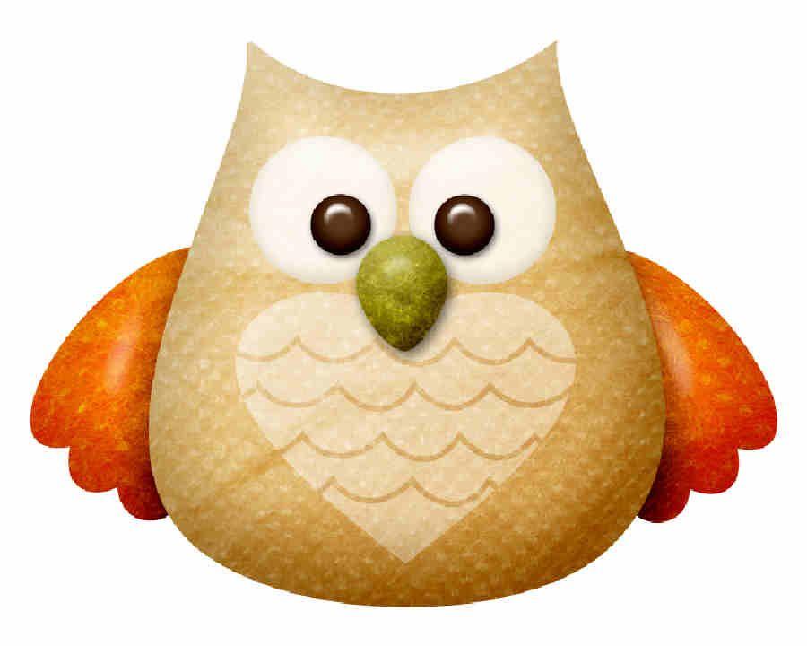 ༺♛. Owls