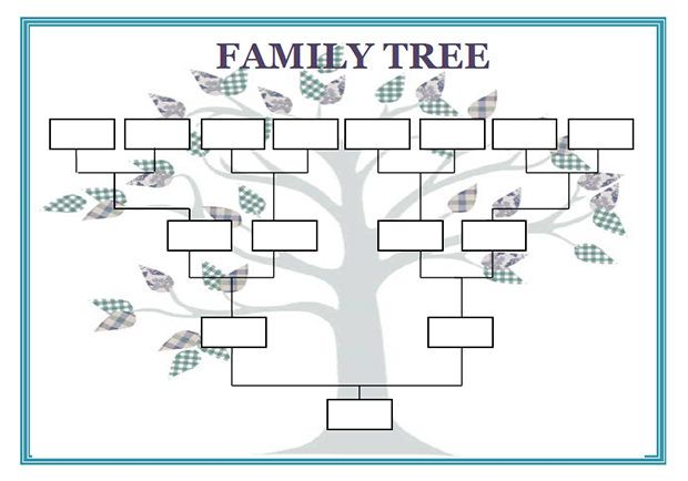 Blank Family Genogram Template  Cub Scouts    Template