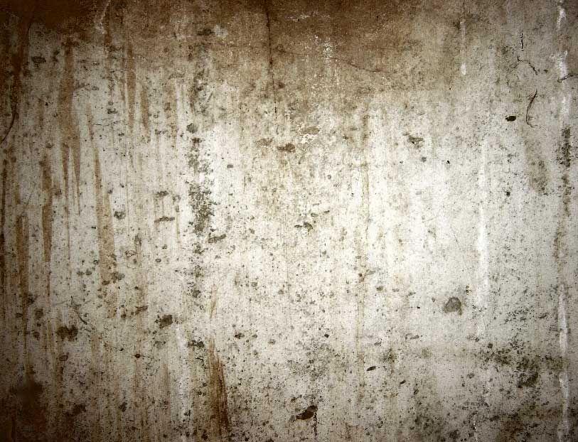 Faux Concrete Interior Walls Google Search With Images Concrete Basement Walls Textured Walls Concrete Texture