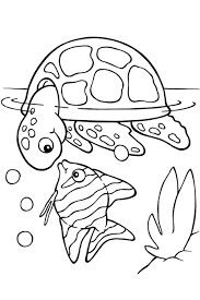 Kura Kura Dan Ikan Turtle Coloring Pages
