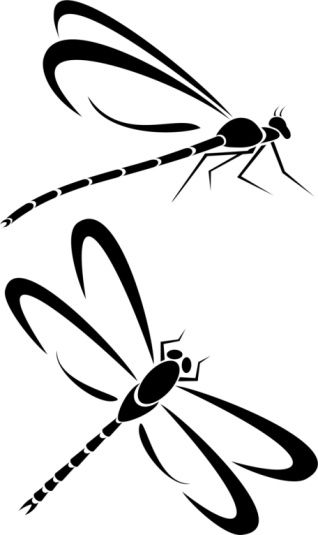 Dragonfly Tattoo Line Drawing : Small quot dragon fly tattoos tribal dragonfly drawing what