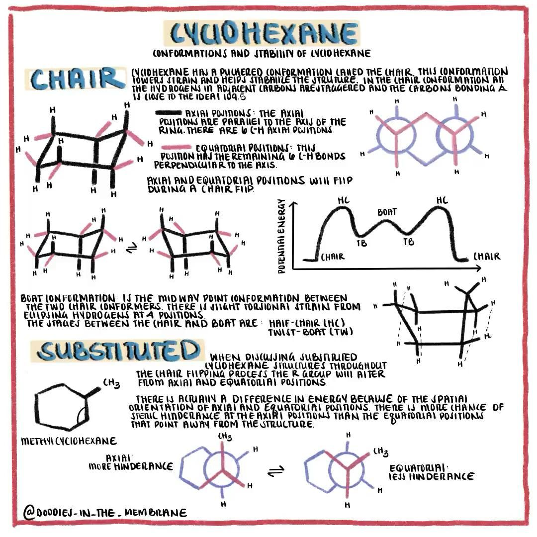 Organic Chemistry Educational Infographic Cyclohexane And Chair Conformation Video In 2020 Organic Chemistry Educational Infographic Chemistry
