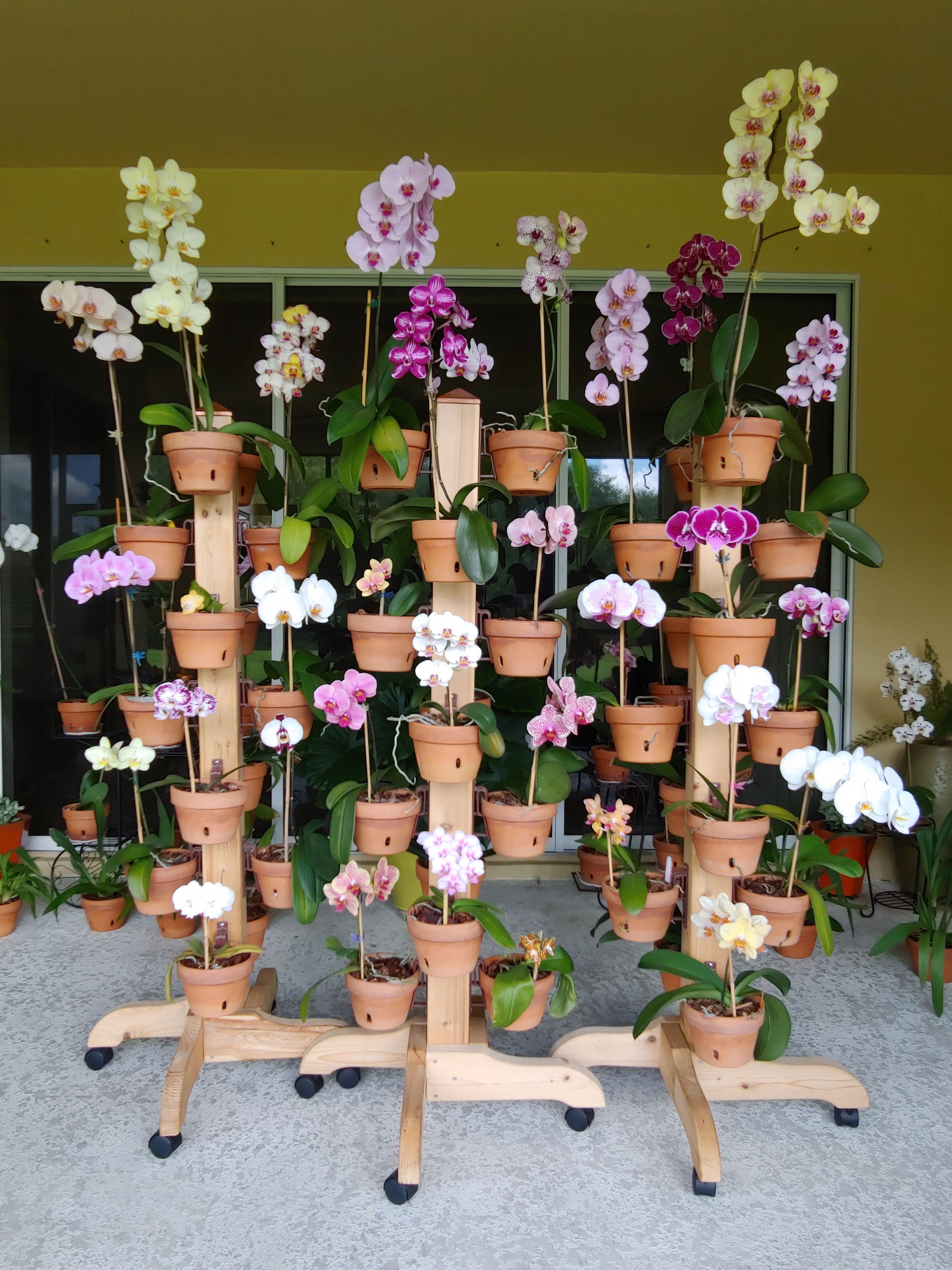 Solid Cedar Rolling Plant Stands From Hangapot Com Poles Come With Legs Wheels Cap And 16 Hangapot Flower P Hanging Flower Pots Flower Pot Hanger Flower Pole