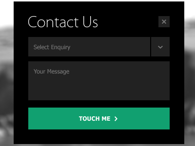 Awesome Examples Of Contact Forms And Pages  Web