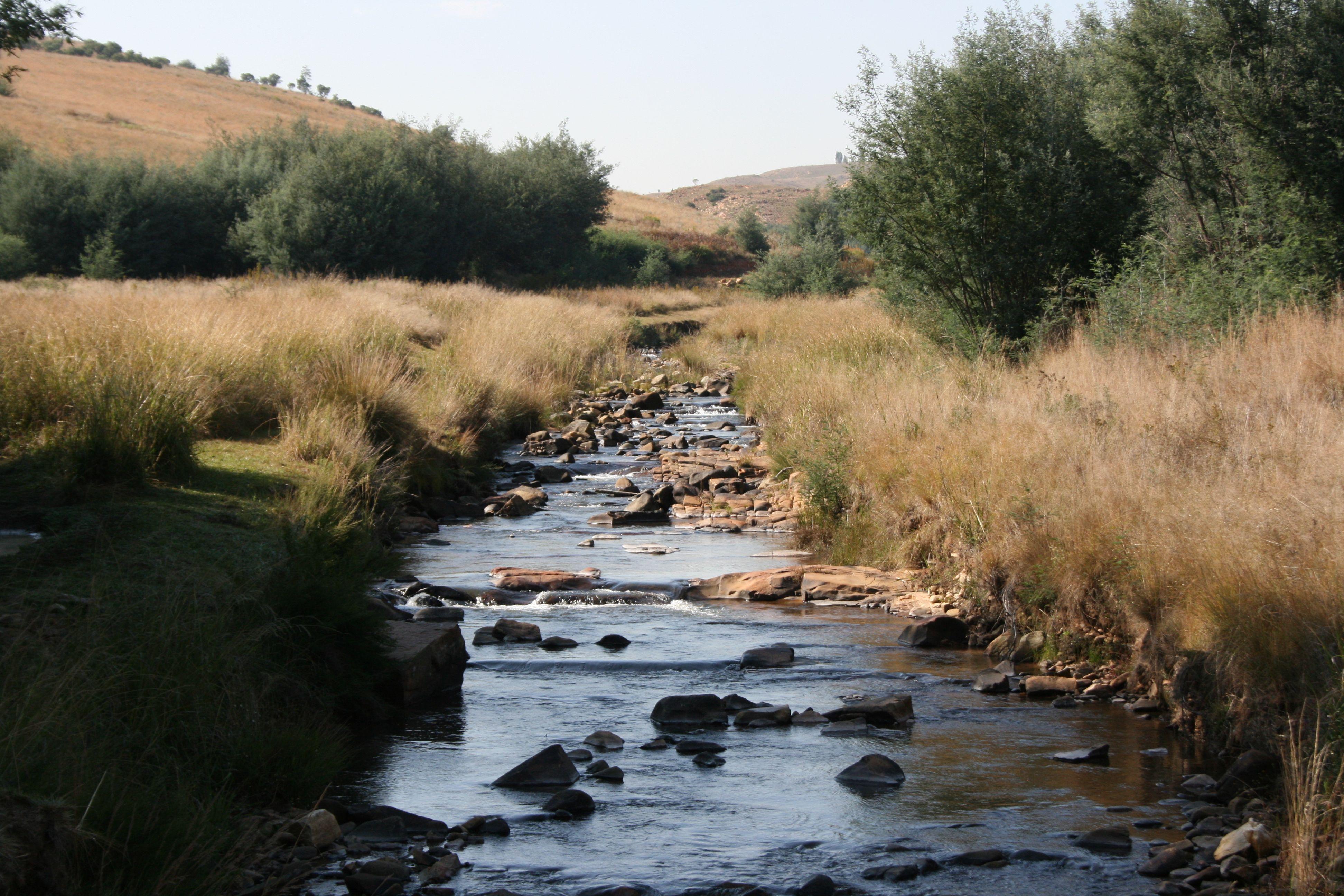 The Witpoort River near Dullstroom
