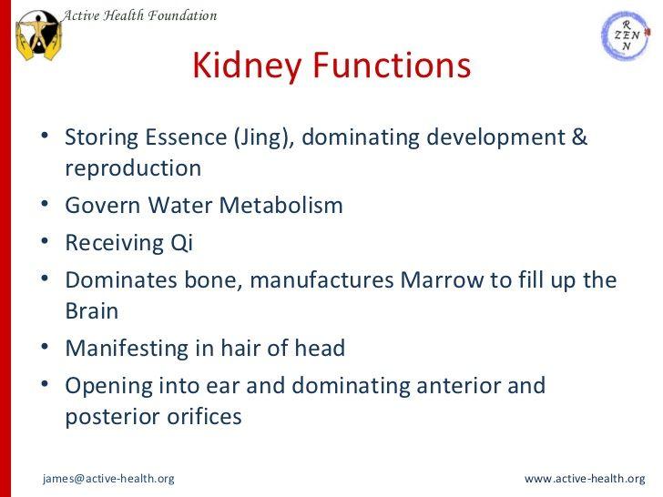 Kidney Functions Ullistoring Essence Jing Dominating