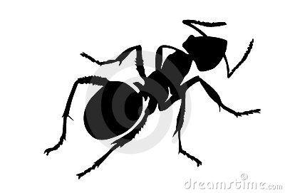 Vector silhouette ant by Sergey Yakovlev, via Dreamstime