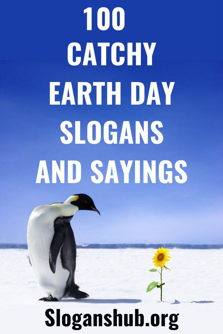 Catchy zoo slogans