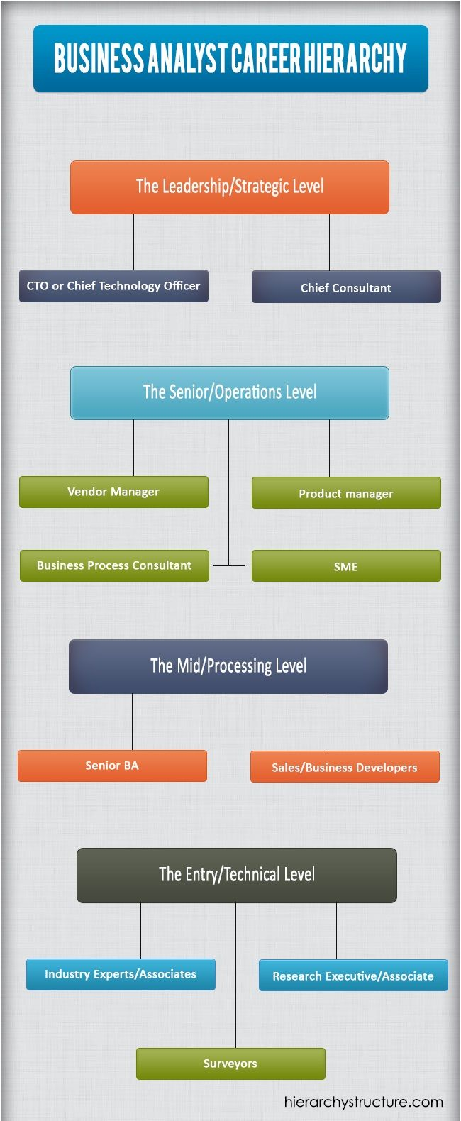 Business Analyst Career Hierarchy Business Hierarchy