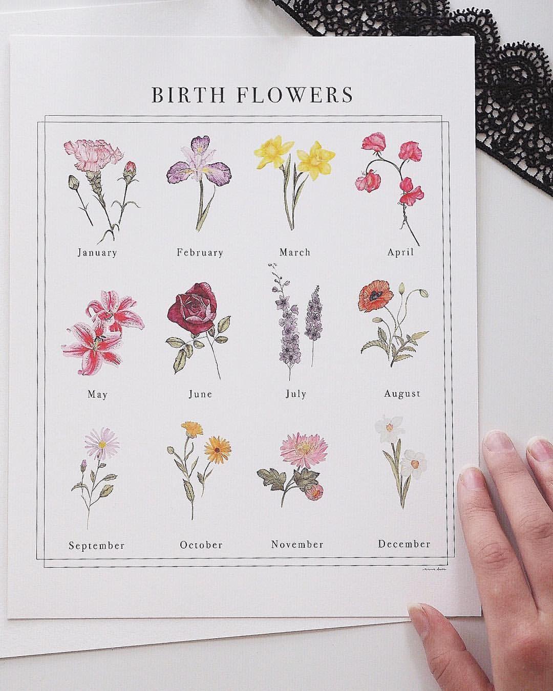 Birth Flowers Art by annaliisamoss Birth flowers, Birth