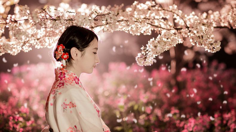 Japan A List Of Events And Seasonal Attractions In March Japan Cherry Blossom Season Girl Wallpaper Japan
