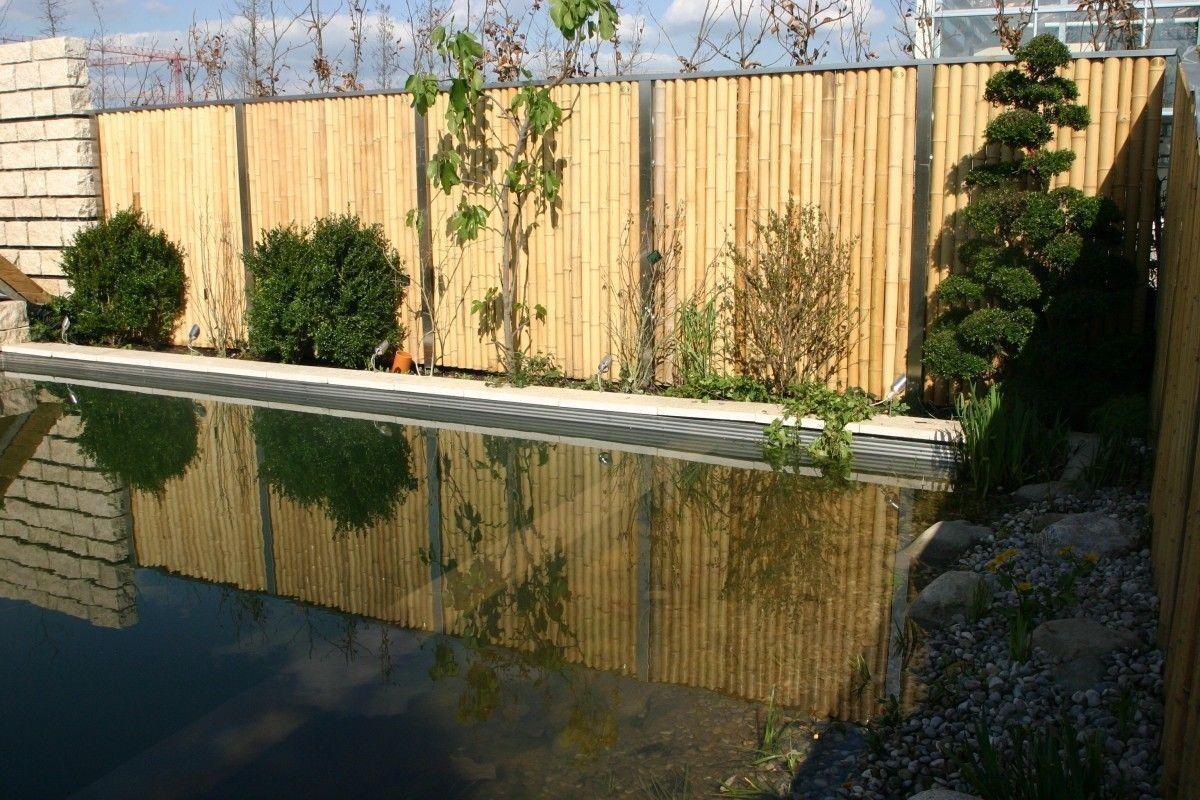 Bambus Sichtschutzeine tolle Alternative