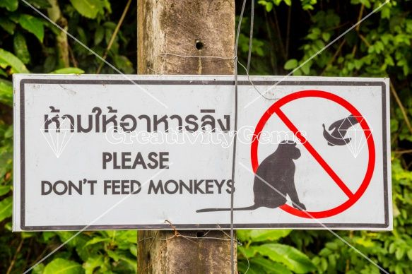 Do not feed #monkeys sign in English and Thai – CreativityGems